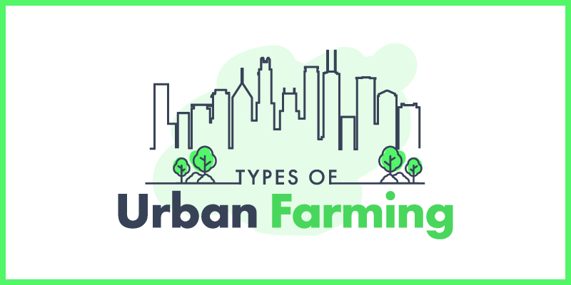 Types of Urban Farms